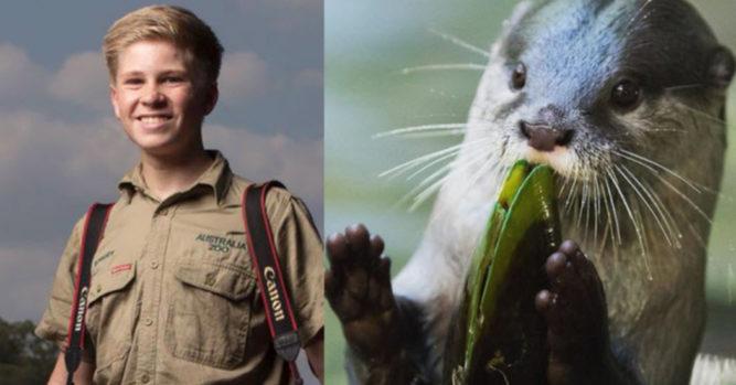 Steve Irwin S 14 Year Old Son Is An Award Winning Photographer 23 Pics Inner Strength Zone